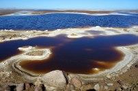 saline lagune san ignacio