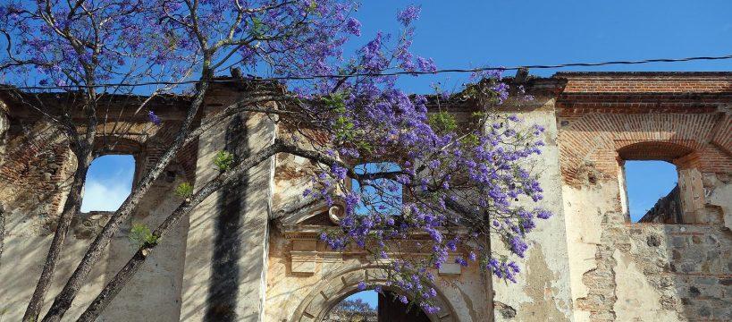 facade_ruine_antigua